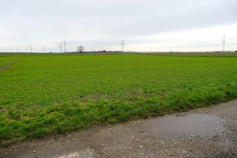 Vom Feld zu Bauland: Grundstücksentwicklung