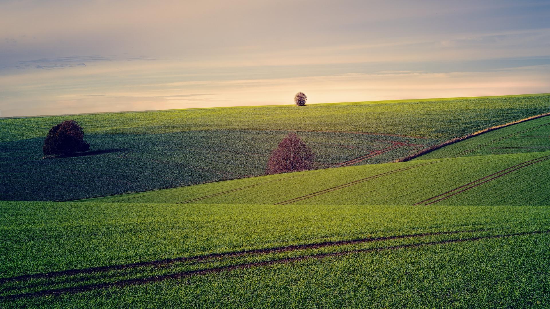 Grundstücksbewertung von einen großen Stück Land