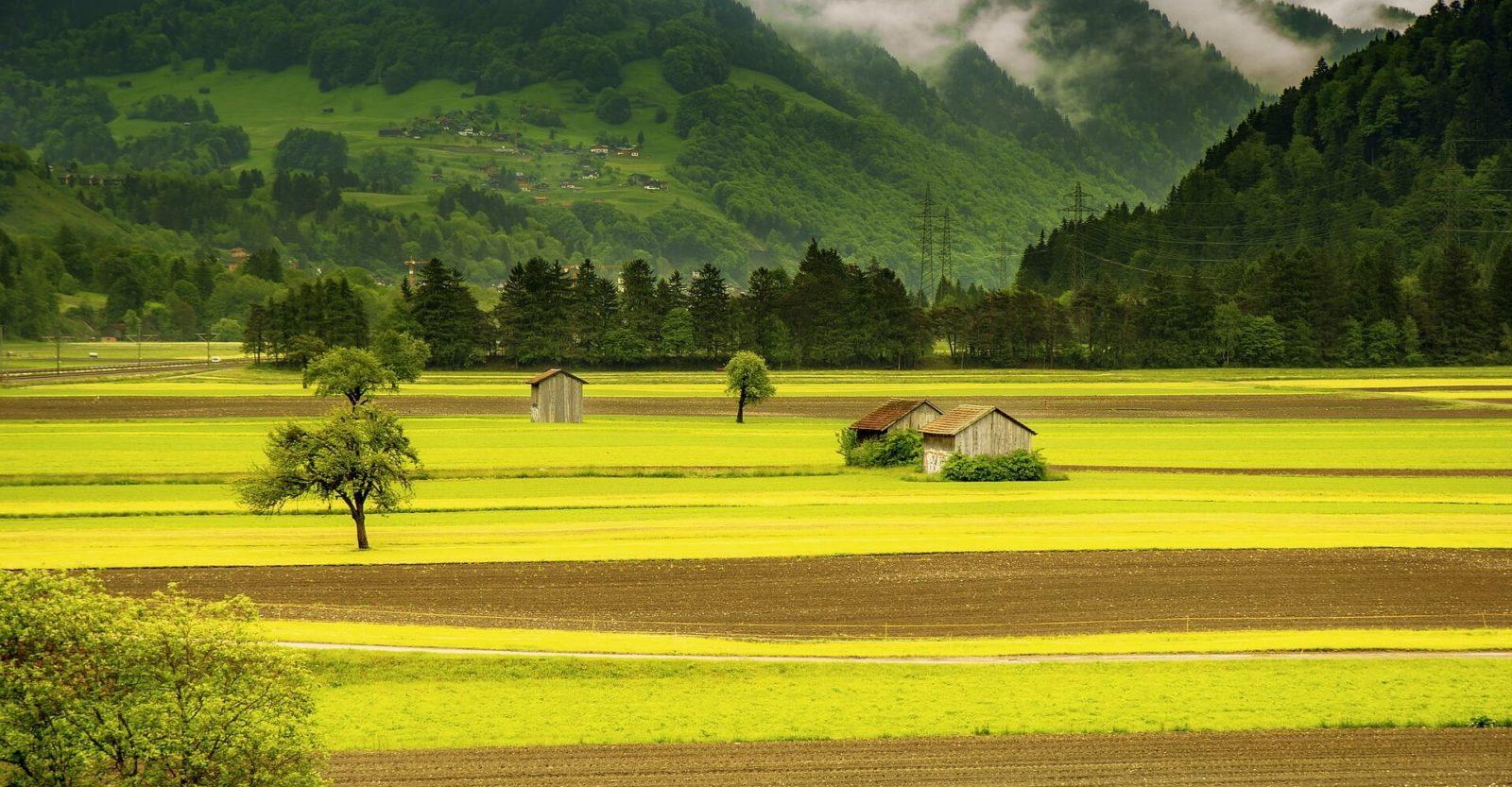 großes Grundstück mit dem Potential zur Grundstücksentwicklung und Grundstückserschließung. Mehr Infos für Grundstücksbesitzer